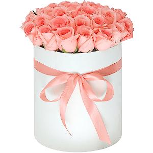 Цветы в дмитрове купить